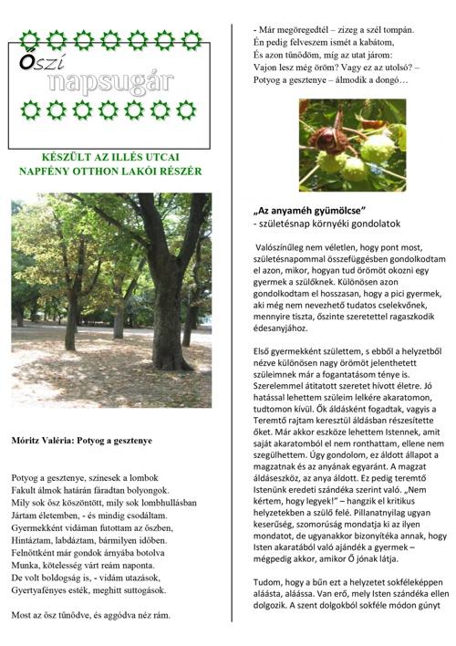 Napsugár újság - 2011. őszi szám