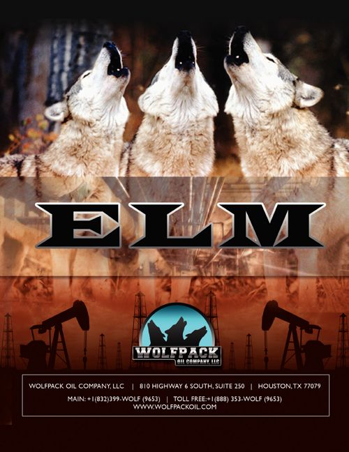 ELM Prospect Brochure