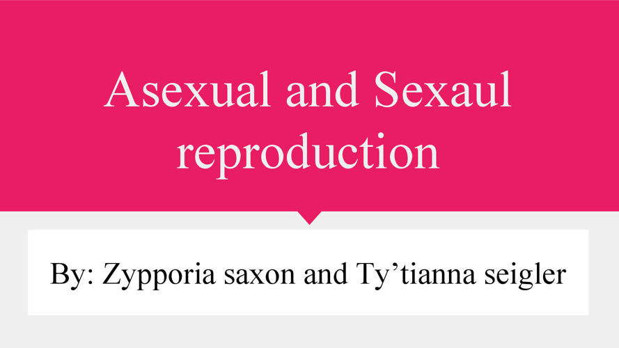 Asexual And Sexual Reproduction- Flip Snack