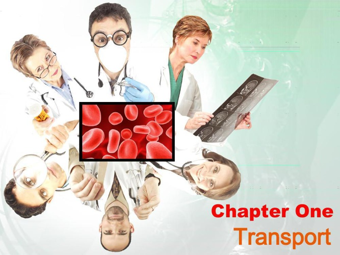 Chapter 1 Transport