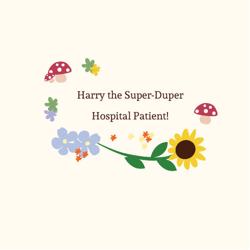 Copy of Day Patient