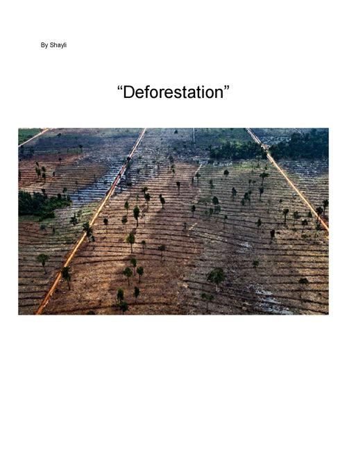 DeforestationbyShayli