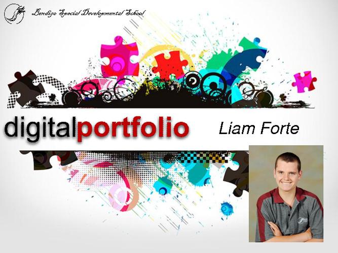 Liam's 2012 portfolio