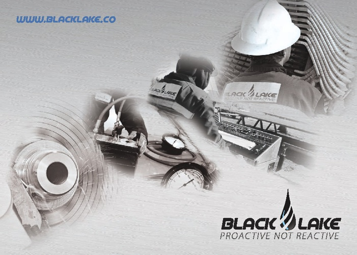 Black Lake Company Profile