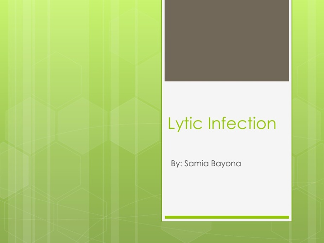 Lytic Infection Cycle