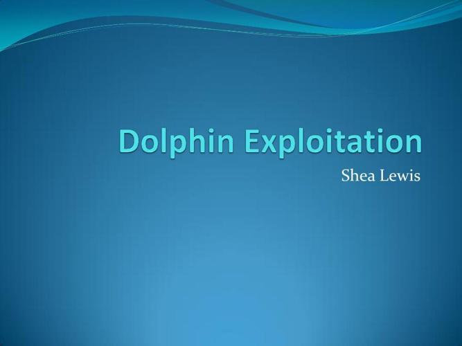 Dolphin Exploitation