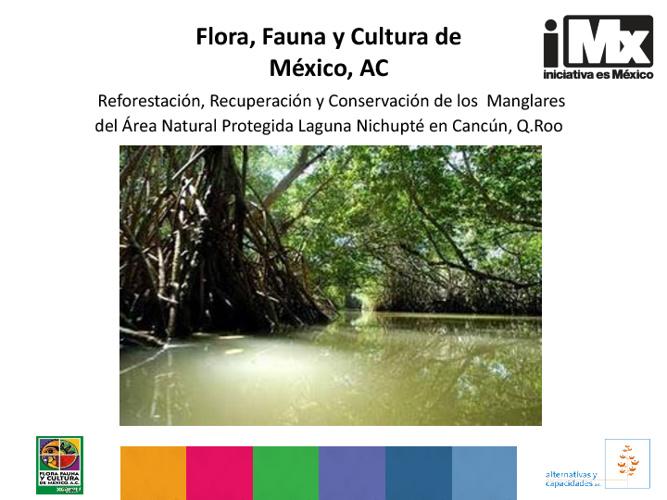 RF - FFyC - Reforestación, Recuperación y Conservación