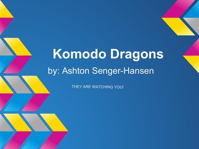 Komodo Dragons Adaptations