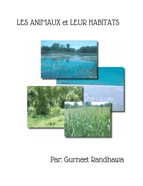 FrenchBook-Gurneet (2)