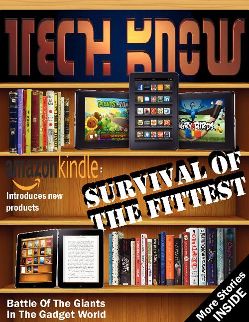 4M8 (Group 2): Amazon Kindle