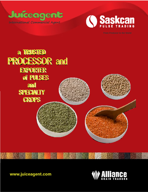 Trusted processor an exporter of pulses