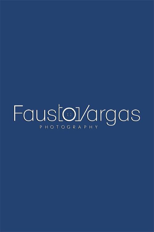 Fausto Vargas Servicios