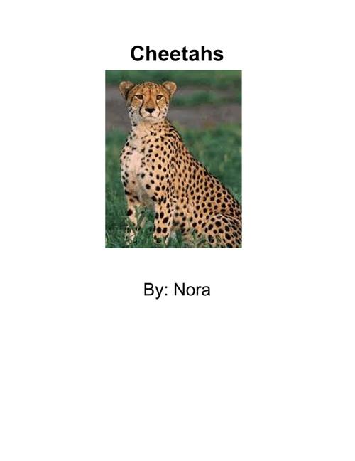 Cheetahs by Nora