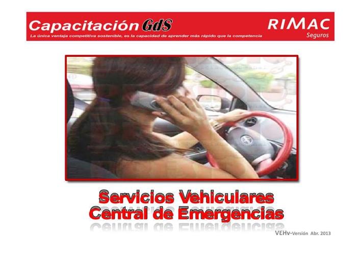 Servicios Vehiculares (PPTminimizer)