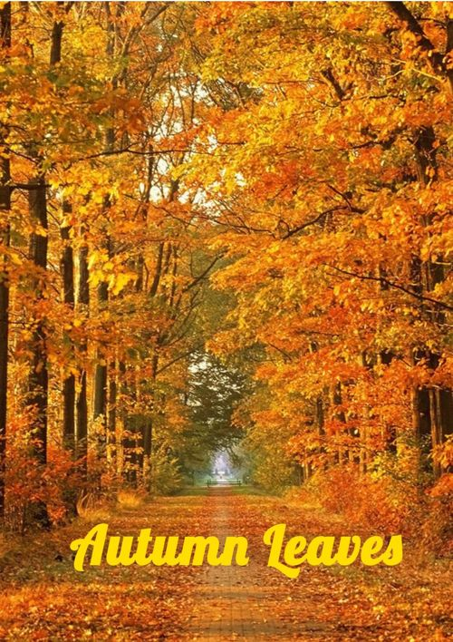Autumn Leaves Booklet