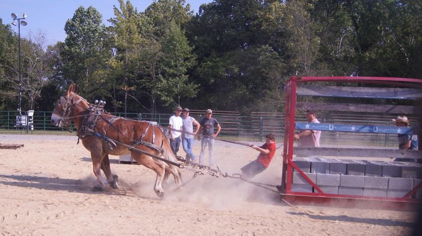 2014 Mule Pull Westmoreland