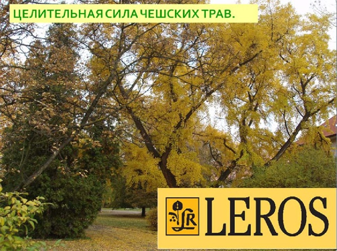 LEROSPresentation
