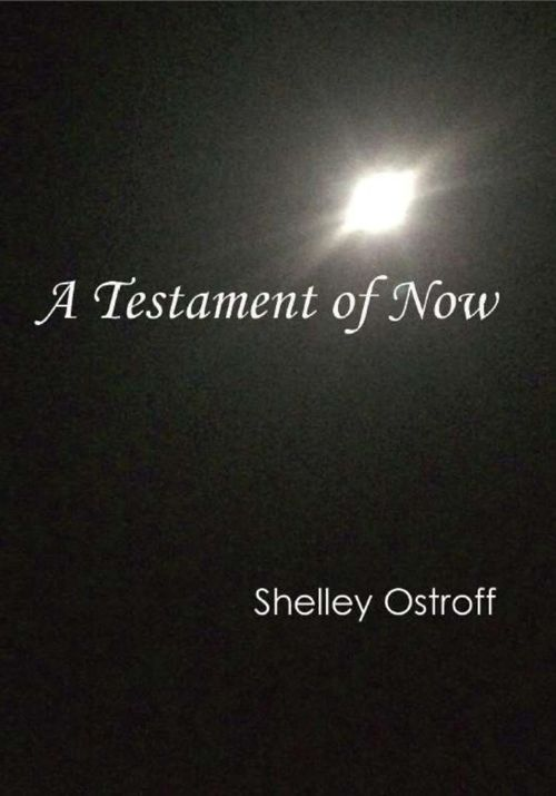A Testament of Now - Preview