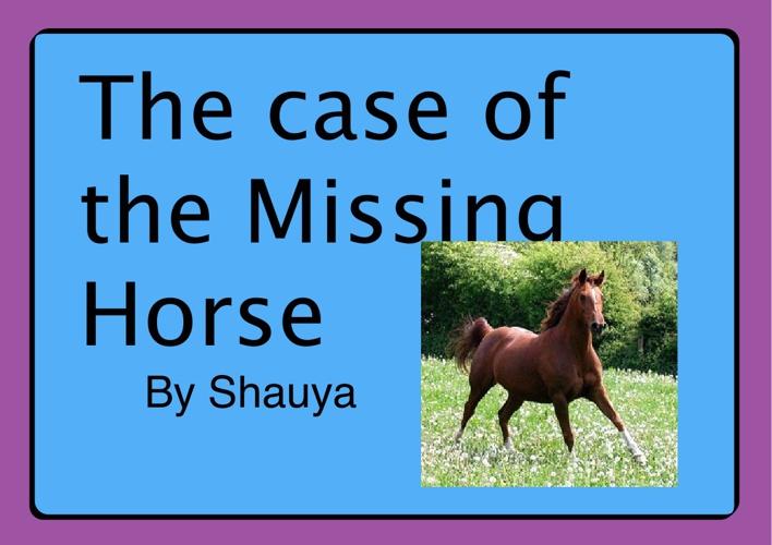 4JP Mystery Shauya