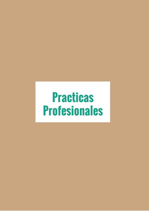 practica profecional