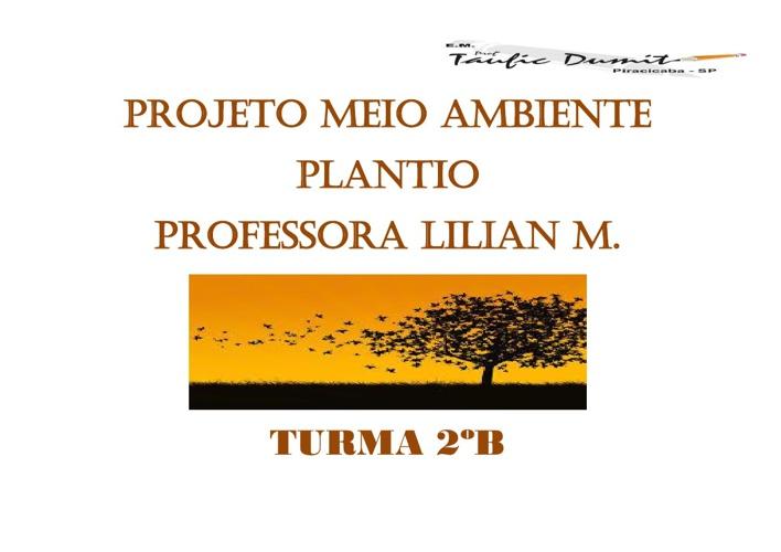 Projeto Meio Ambiente 2ºB
