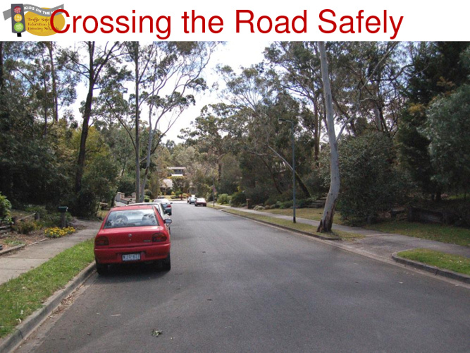 Crossing the Road Safely