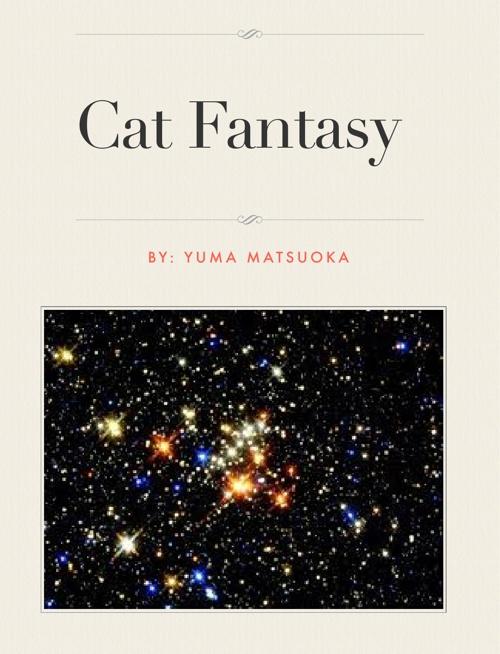 Cat Fantasy