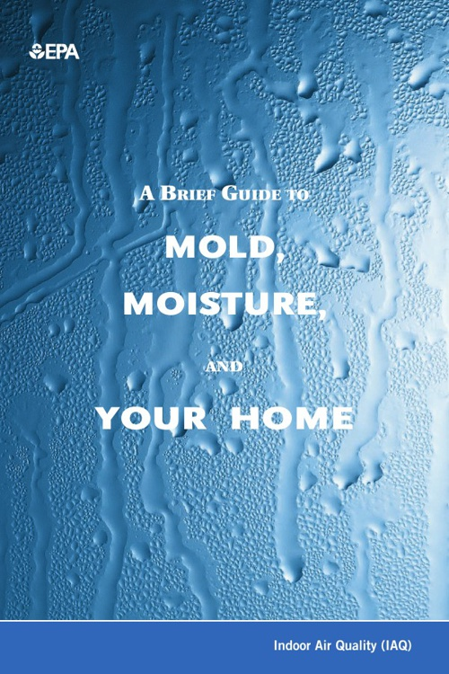 A Brief Guide to Mold, M oisture, And Your Home