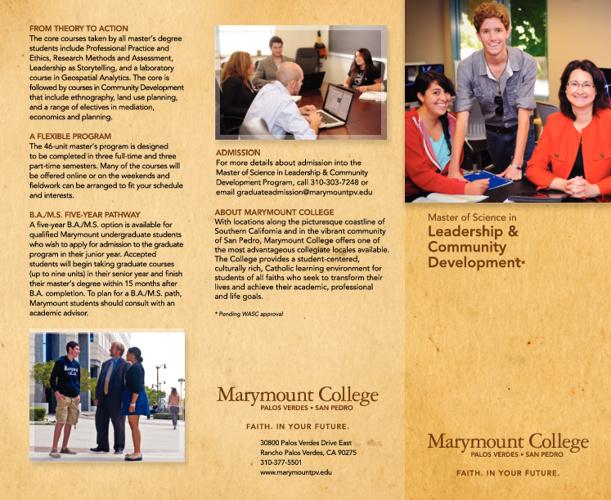 Leadership and Community Development MS Brochure