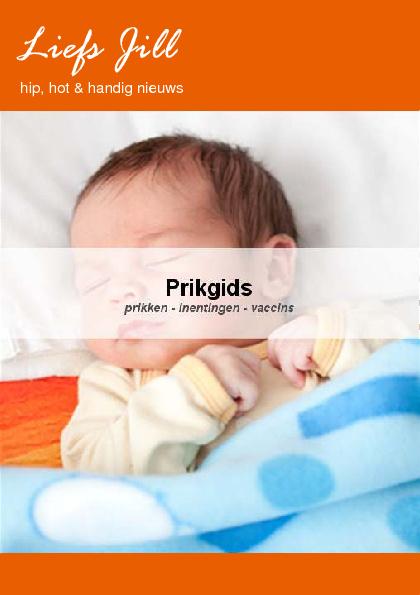 Liefs Jill Prik Gids - inclusief praktische checklist!