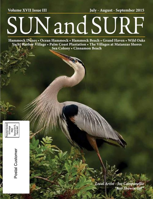 Sun and Surf July 2015