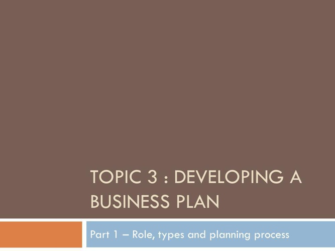What is a business plan