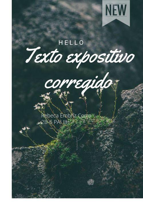 Texto expositivo corregido
