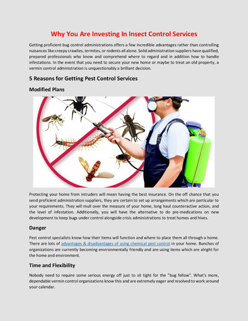 Why You Are Investing In Insect Control Services
