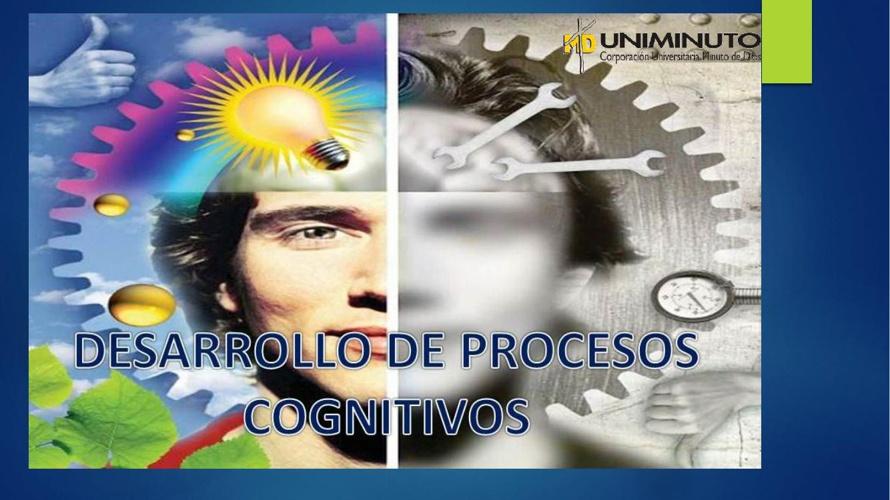 DIARIO DE CAMPO PROCESO COGNITIVOS SUPERIORES