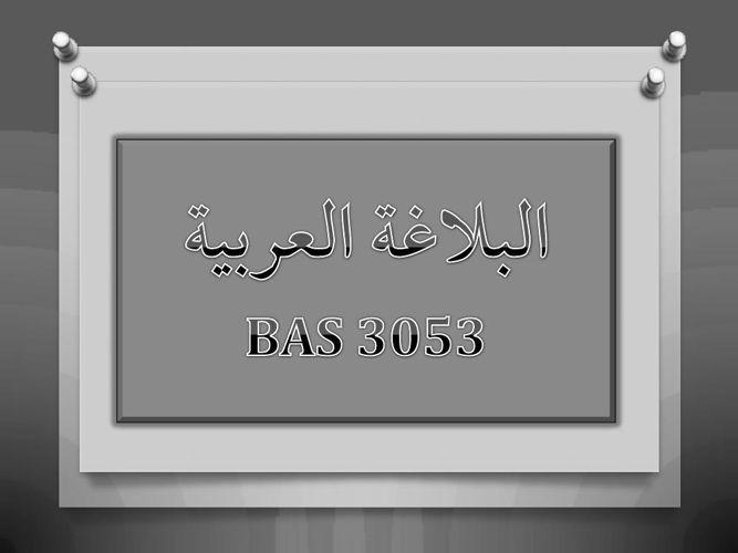 BAS3053 Course Outline