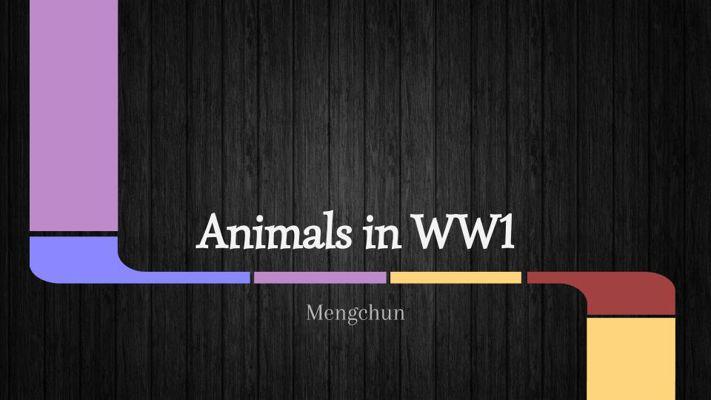 Animals in WW1