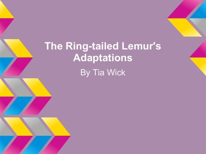 The Ring Tailed Lemur's Adaptations