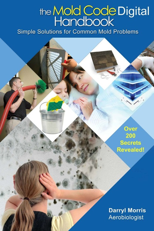 Simple Solutions For Common Mold Problems