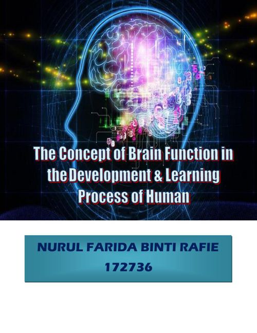 The concept of brain function in the development & learning proc