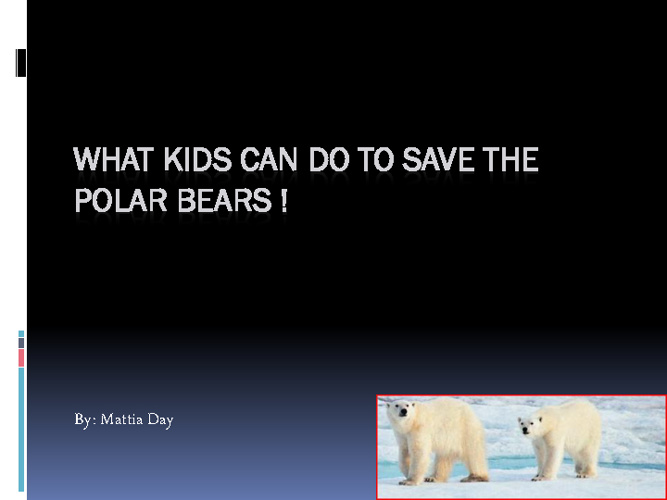 What Kids Can Do To Save The Polar Bears