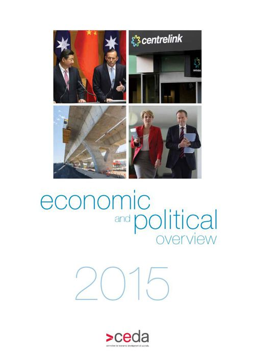 2015 Economic and Political Overview