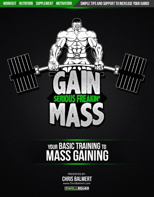 Basic_Training_To_Mass_Gaining