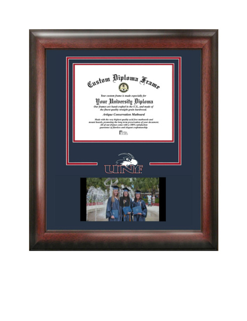 Picture Video Frame