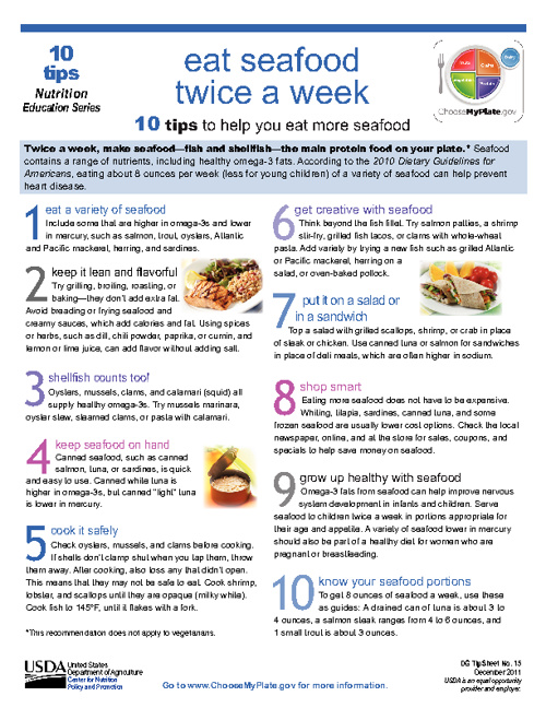 My Plate Food Guide and Top Ten Lists