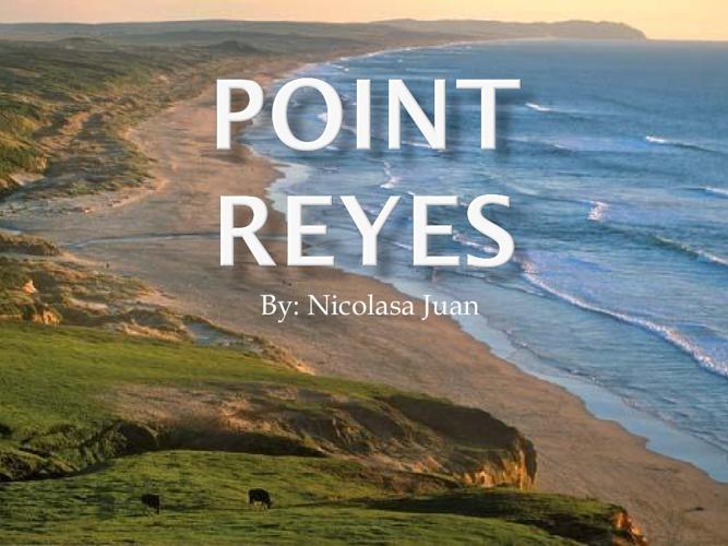 Point Reyes!