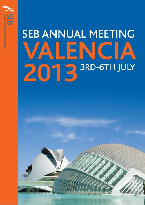 SEB meeting in Valencia 2013