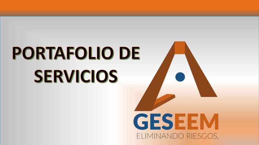 PORTAFOLIO DE GESEEM S.A.S