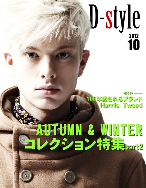 D-style3