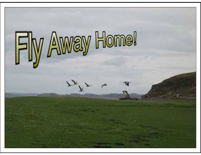 Fly Away Home - Nuvaera